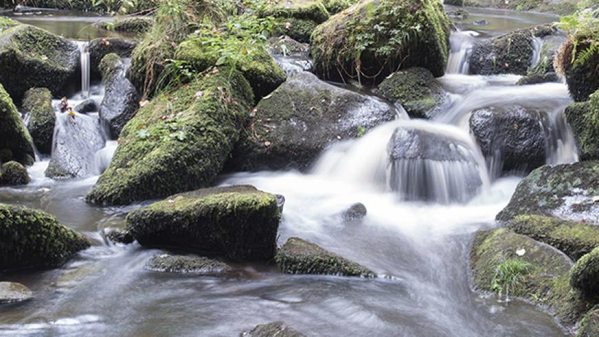 Acqua – fonte di vita fin dalla notte dei tempi