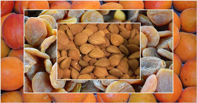 Aprikosen und Aprikosenkerne – verkannte Vielkönner
