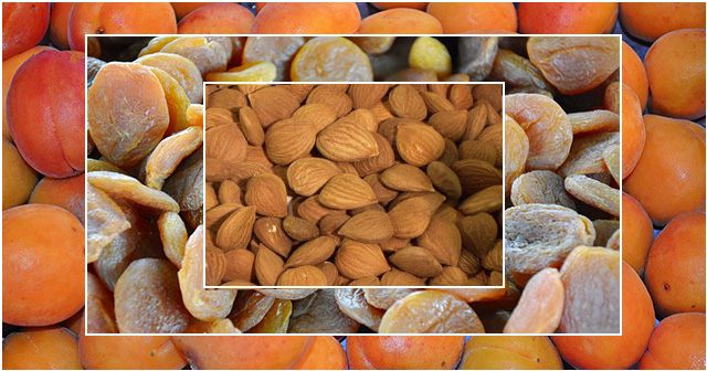 wirkung getrocknete aprikosen